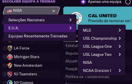 USA Lower Leagues Extension