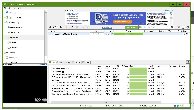 utorrent not seeding after download