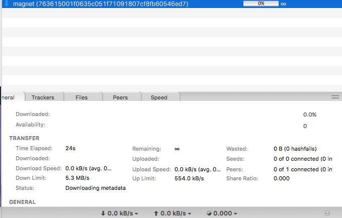 Magnet Links stuck on 'Downloading Metadata