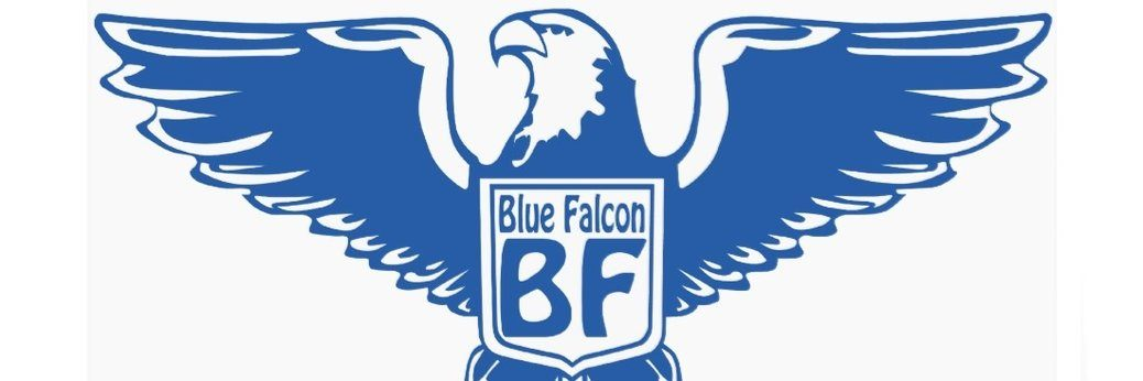 The Blue Falcons of Shamland