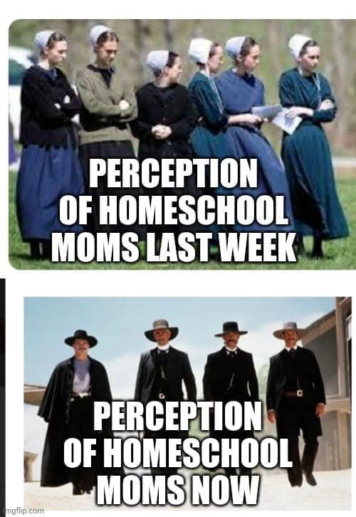 Homeschool perception, last week:this week.jpg