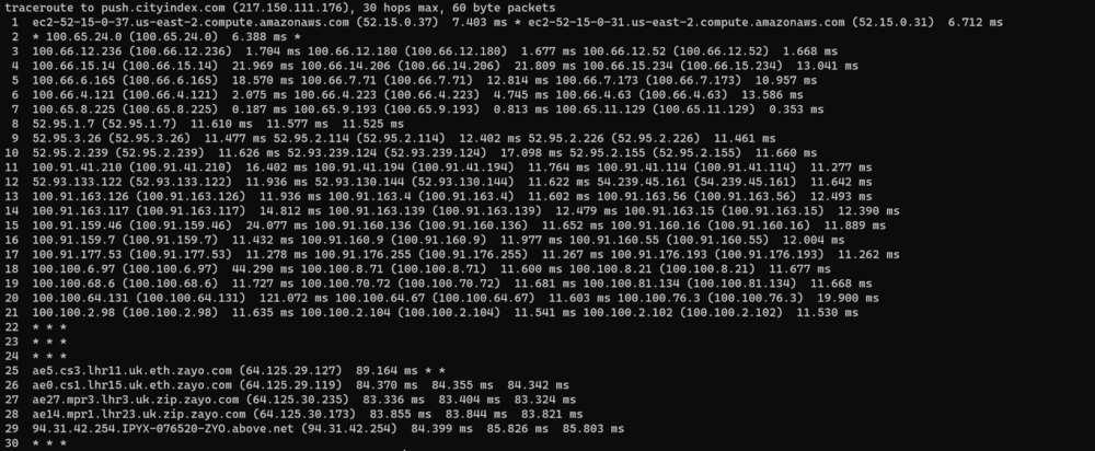 aws_ec2_traceroute.PNG