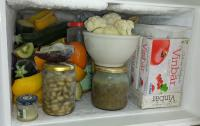 Brian\'s little freezer.jpg