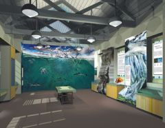 Port Townsend Marine Science Center Natural History Exhibit Design