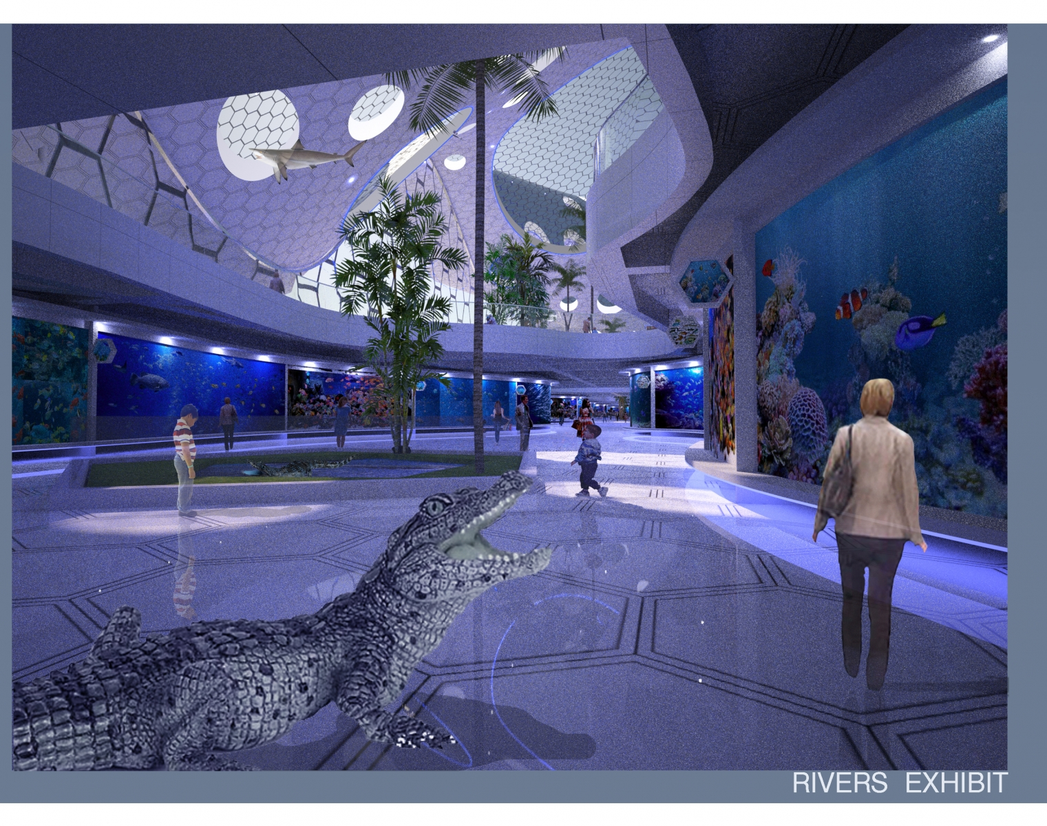 New York  Aquarium Competition  0004 Layer 6 copy