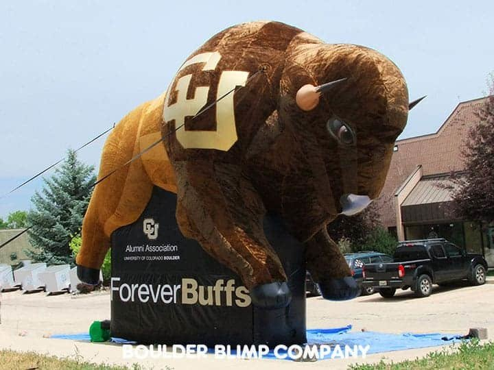 Colorado-University-Buffalo-Go-CU-Buffs-Forever-Buffs-Alumni-Furry-Inflatable-Mascot.jpg.bb1e640ffa6032b9cb318919933d737a.jpg