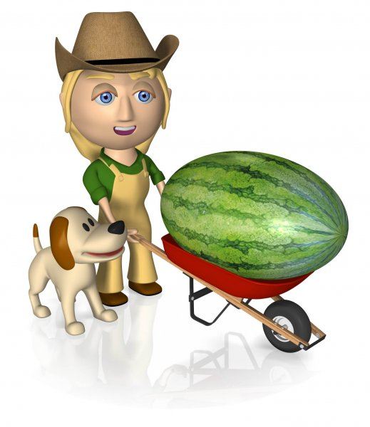 Wheel Barrow Wtrmln Cowgirl.jpg
