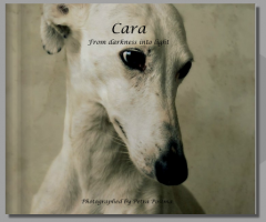 Projects for the galgo's