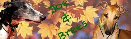 Joe And Brees autumn siggie Jpg