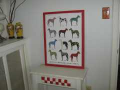 multicolored greyhounds print