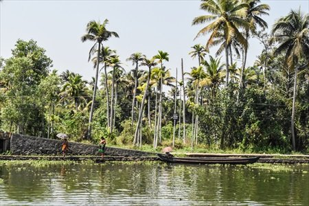 Kerala Backwaters.jpg