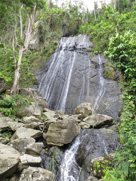 El Yunque National Forest, Puerto Rico