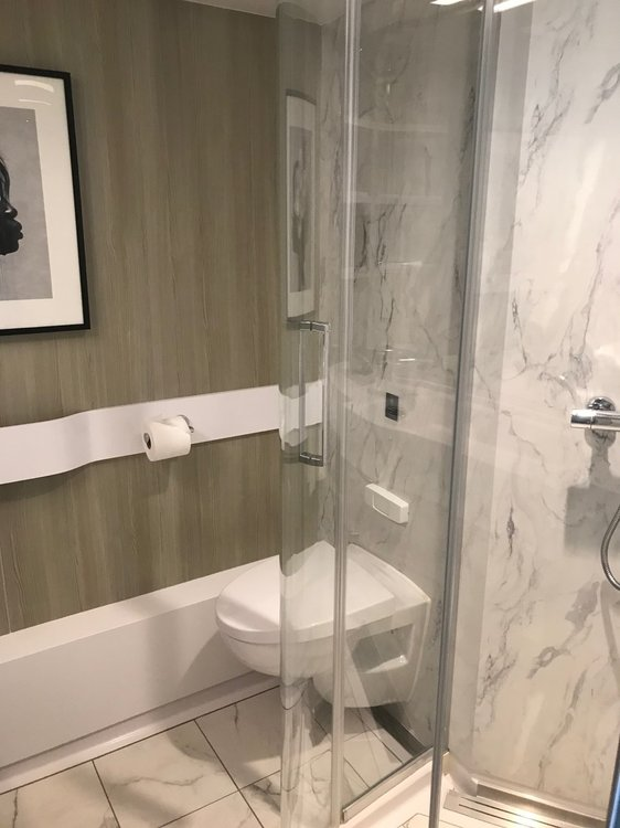 Celebrity Edge shower and toilet.jpg