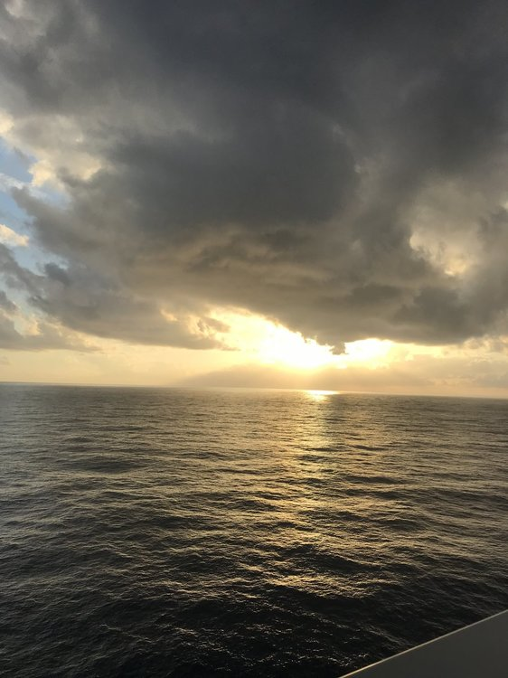 Anthem of the Seas - Review - Southern Caribbean - Feb 3