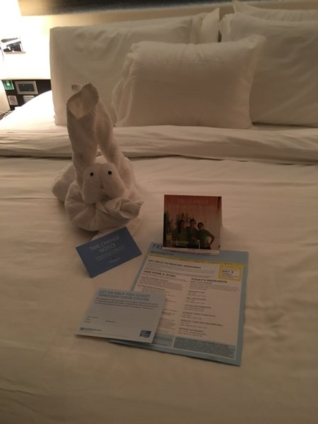 Getaway Towel Animal 1.JPG