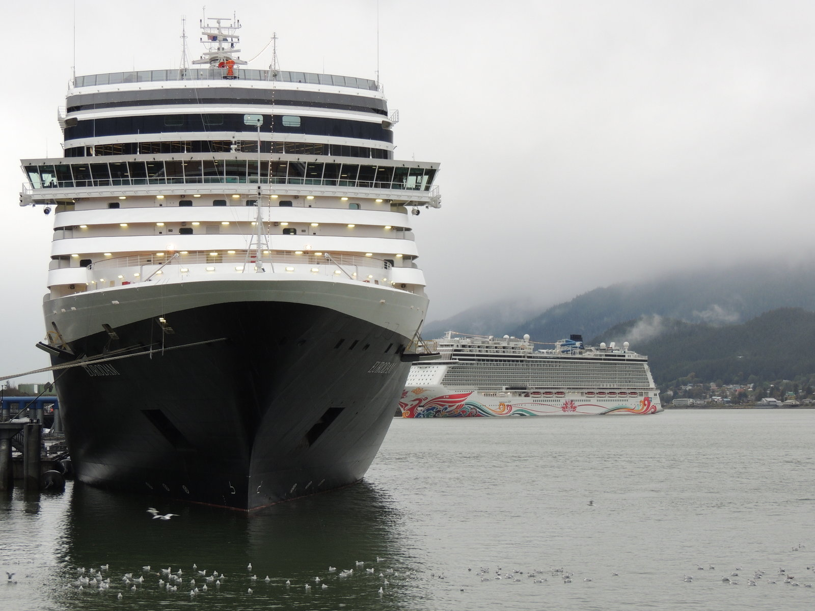 Eurodam and Norwegian Joy in Juneau.JPG