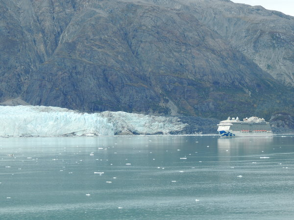 Royal Princess in Glacier Bay.JPG