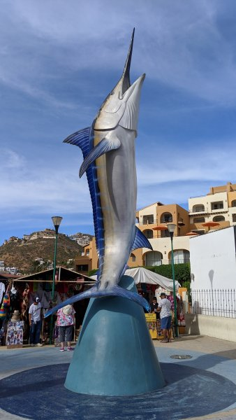 Cabo San Lucas, Mexico - 2019 Jan.