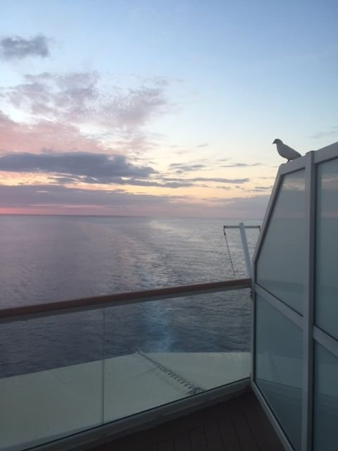 Sunset heading into Bermuda w Pina.jpg