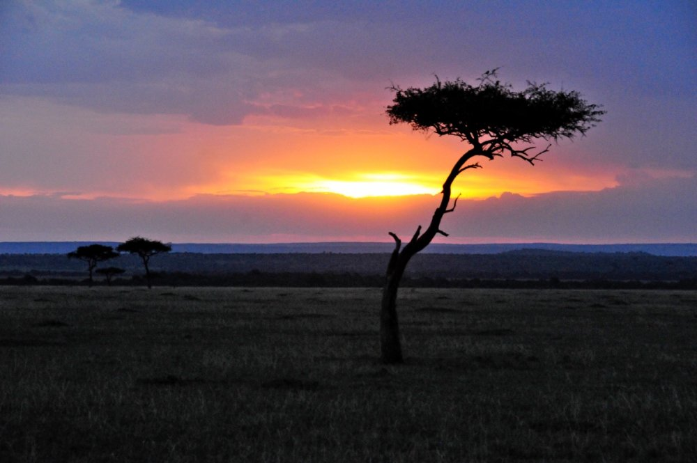 001 African dawn breaking on the Masai Mara.JPG