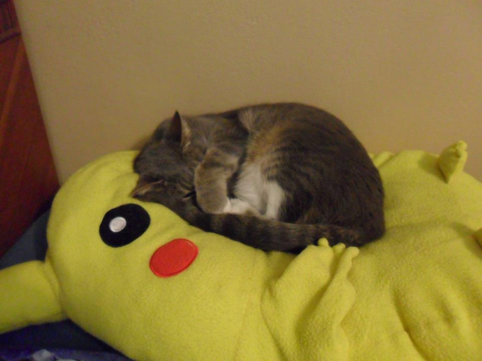 Mims loves her Pikachu pillow