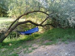 hammock by ditch
