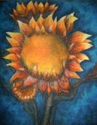 oil pastel sunflower