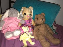 Comfort animals, McBear, Mother, Emibunny, and Ariebunny. All from my wife, except for McBear, who was from an old friend.