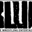 Battle Wrestling Entertainment