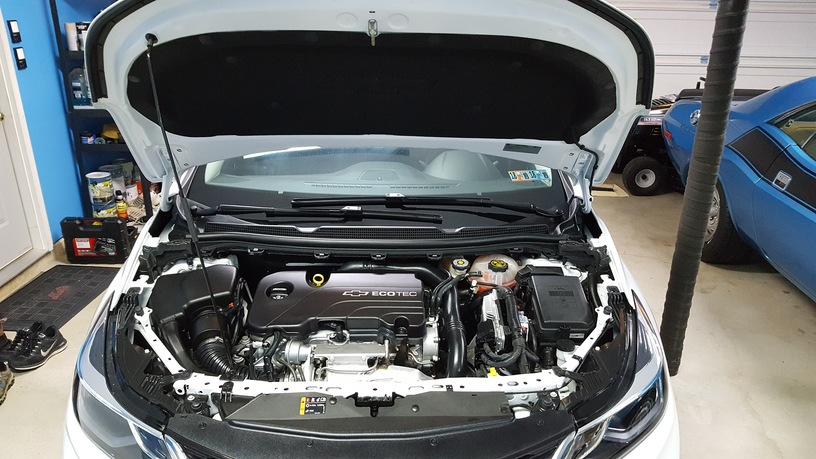 engine_compartment_1.jpg