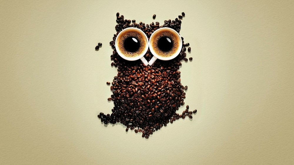 7038551-funny-coffee-owl-wallpaper.jpg