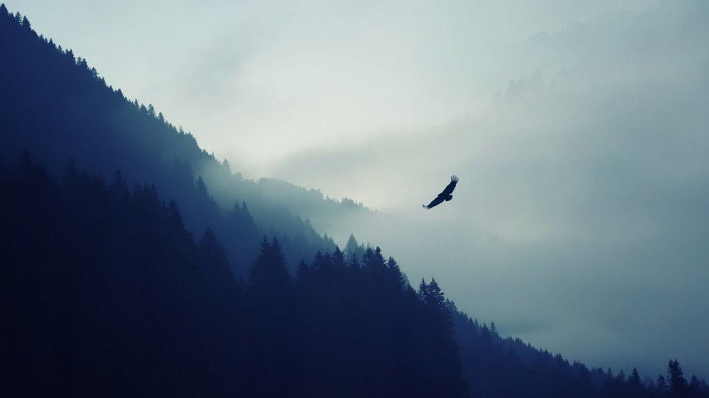 nature-mountain-eagle-fog-landscape-ultrahd-4k-wallpaper-wallpaper-1920x1080 - Copy.jpg