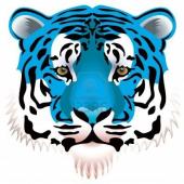 tigerblue77