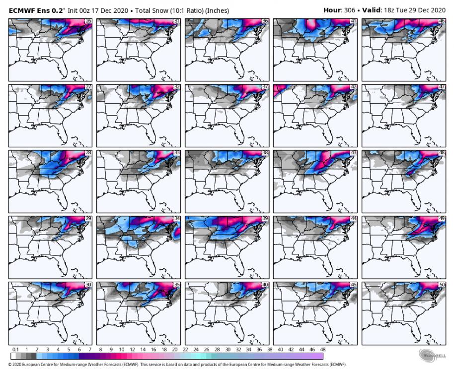 ecmwf-ensemble-avg-se-snow_total_multimember_panel_ecmwf_b-9264800.thumb.png.99f042ea4211d0516d24903dfe6f3be3.png
