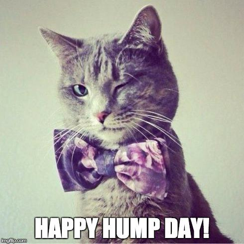 Happy-Hump-Day-Meme-Photo-3.jpg