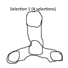 selection 1.png