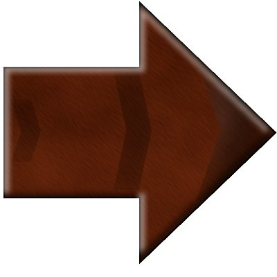 leather arrow button.jpg