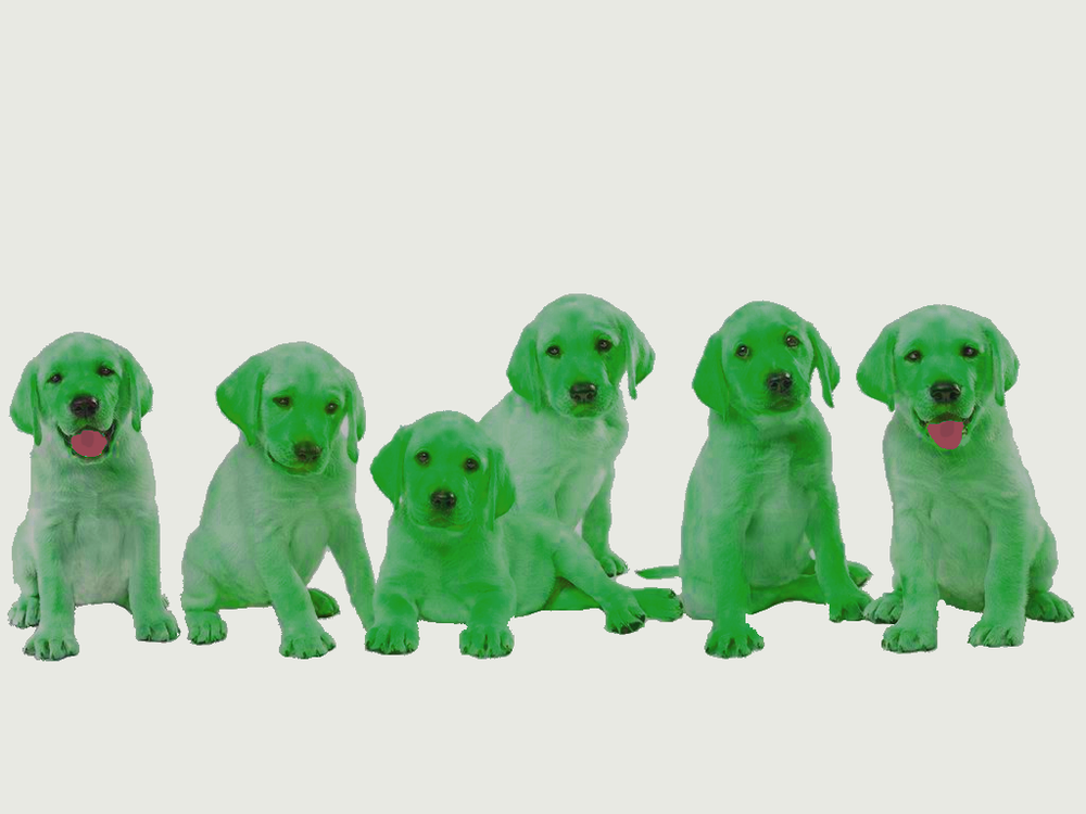 Dogs Green.png