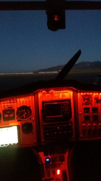Panel and Compass lights.jpg