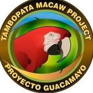 Tambopata Macaw Project