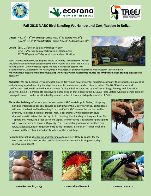 2018_Nov_NABC Bird Banding Workshop and Certification in Belize-001.jpg