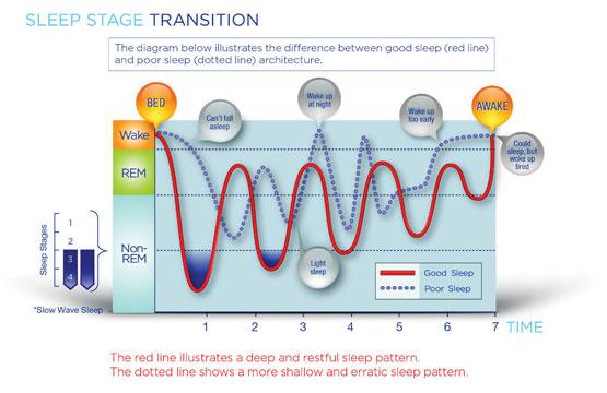 sleep cycle graphjpg