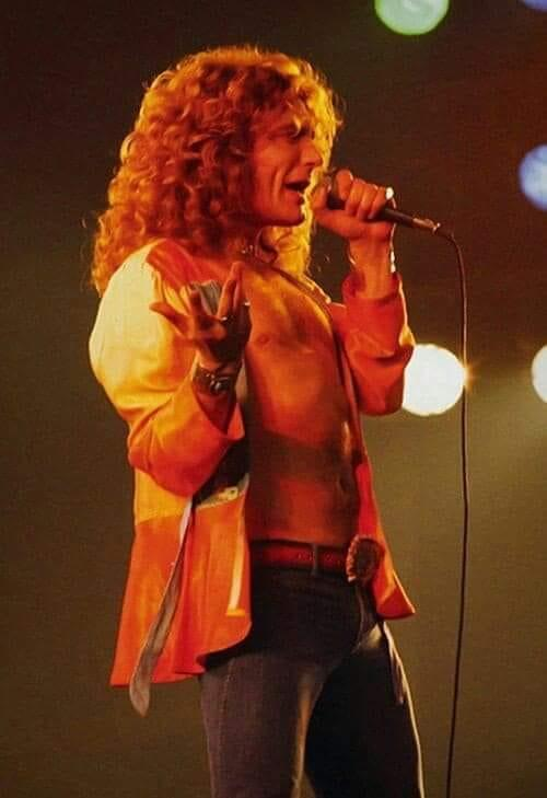 robert plant unknown.jpg