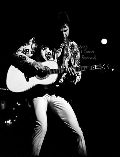 Michael Conen - [PROOF] Ray Davies plays the Ovation in patterned shirt dark vertical SM [The Kinks - Louisville Palace Theatre, Louisville KY  6-15-82].jpg