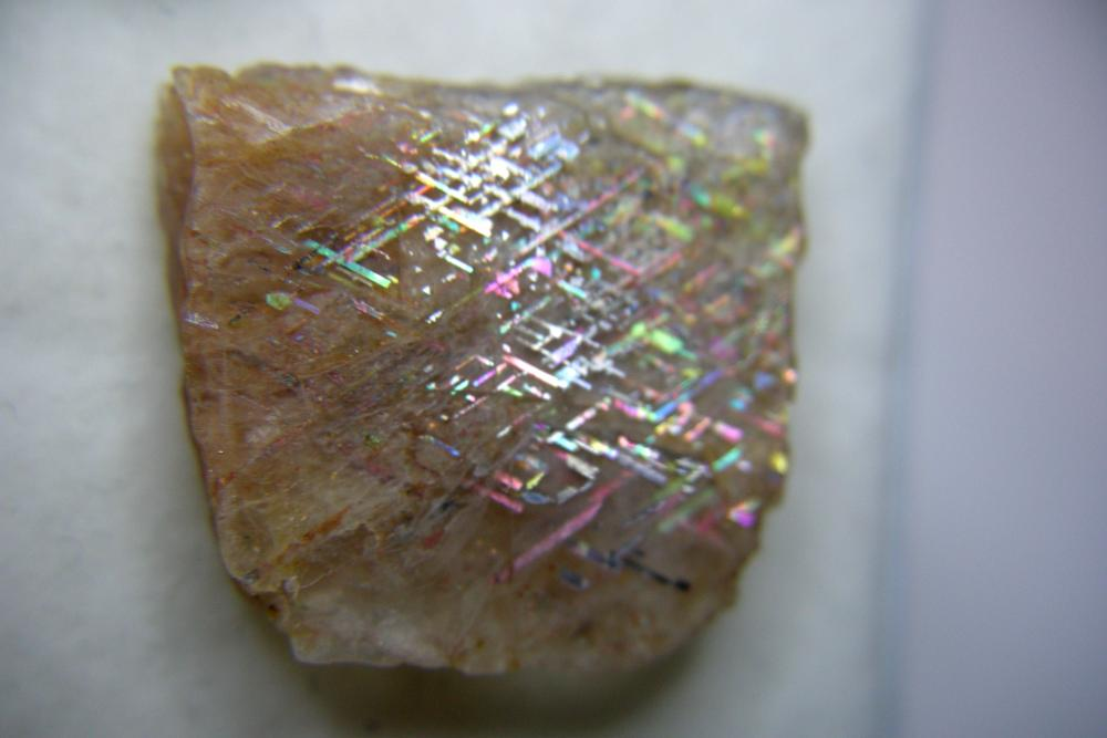 RLS-spec-26-20.11ct 23.0x21.0x5.0mm.JPG