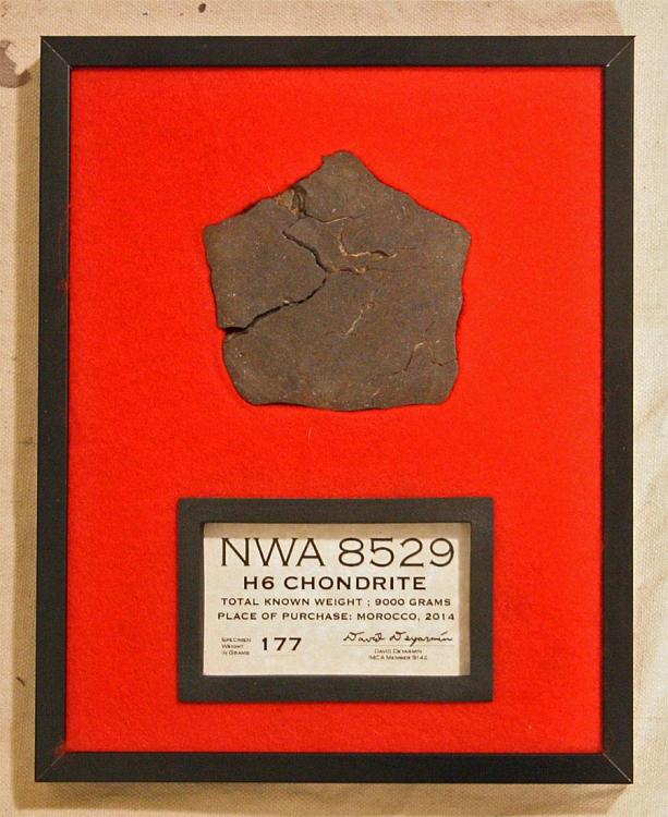 NWA 8529 177 Gram Slice Display 001.jpg