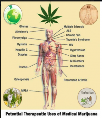 Potential Therapeutic Uses of medical Cannabis