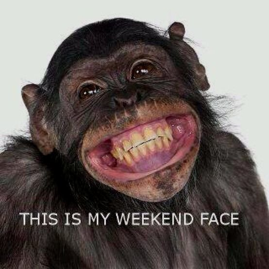 MONKEYSMILINGc063ab403746d7fe8693f8641aa44e15--monkey-business-happy-weekend.jpg