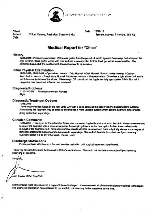 Personal info removed 12 18 2018 Chloe's medical report 001.jpg