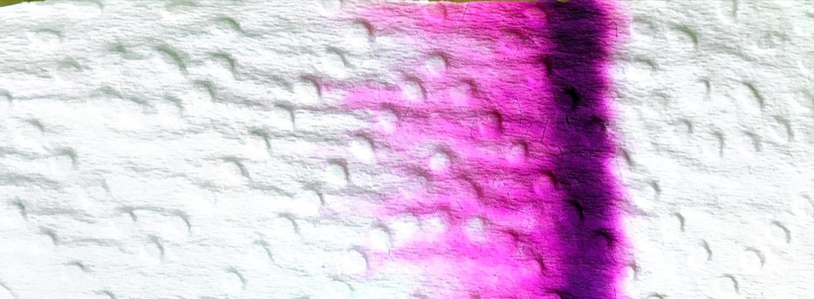 large.59d0ea41f0a20_NoodlersKingPhilipRequiemchromatografia.jpg.e1e38a8315eeec6fd36b1138458fac8c.jpg